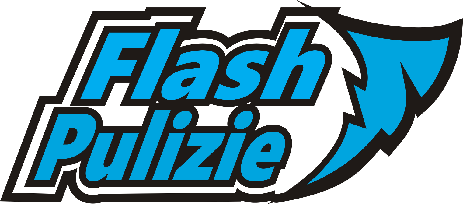 logo flash pulizie